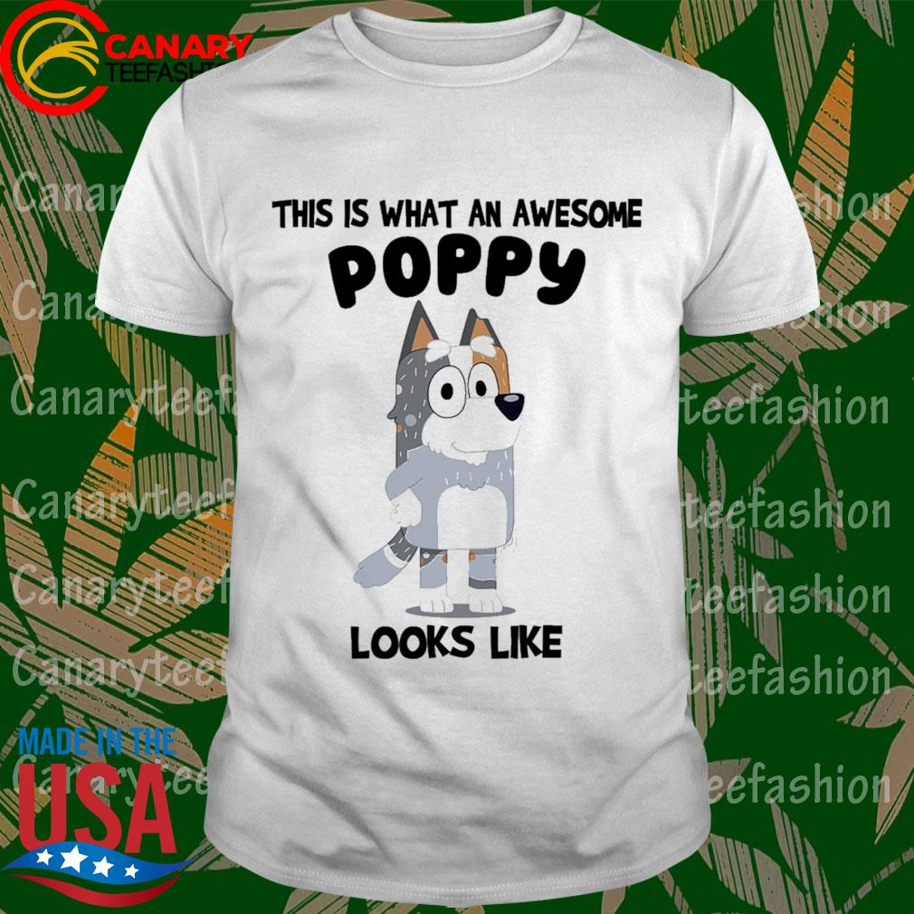 Bluey Bandit This is what an awesome Poppy looks Like shirt